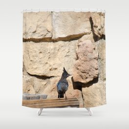 Resident Jay - North_Rim Grand_Canyon Lodge Shower Curtain