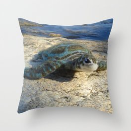 Green Sea Turtle Wool Sculpture Throw Pillow