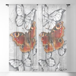 Gray Background with Peacock Butterfly Sheer Curtain