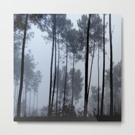 Fog and Forest III-wood,mist,romantic, greenery,sunset,dawn,Landes forest,fantasy Metal Print