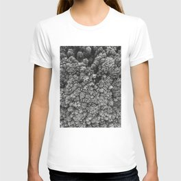 Forest from the bird view T-shirt