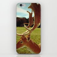 antlers iPhone & iPod Skins featuring Antlers by Anna Dykema Photography