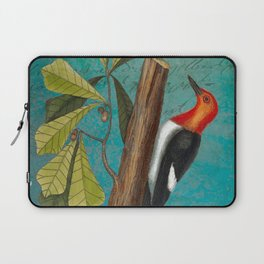 Red Headed Woodpecker with Oak, Natural History and Botanical collage Laptop Sleeve