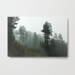 Foggy Forest In The Mountains I (Norway) Metal Print