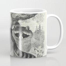 Naturalist Raccoons Coffee Mug