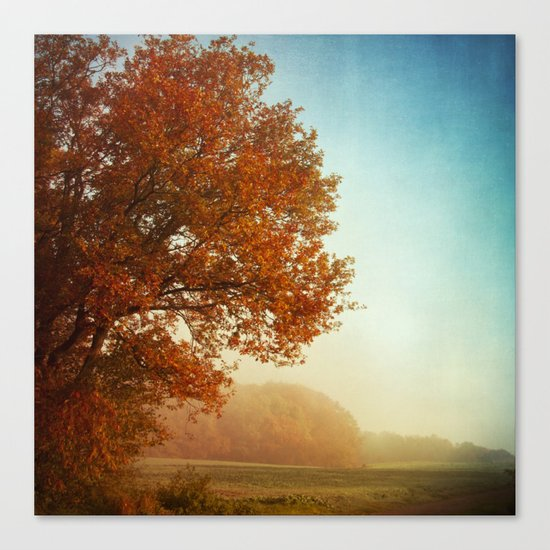 Fall symphony Canvas Print