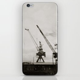 { dancing cranes } iPhone Skin