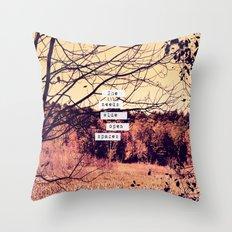 Wide Open Spaces II Throw Pillow