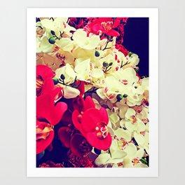 Orchidea boom Art Print
