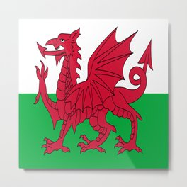 Flag of Wales,uk,great britain,dragon,cymru, welsh,celtic,cymry,cardiff,new port Metal Print