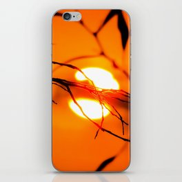 Beautiful Sunset iPhone Skin