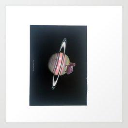 Turtle #16 (Plate V Saturn) [Cecilia Lee] Art Print