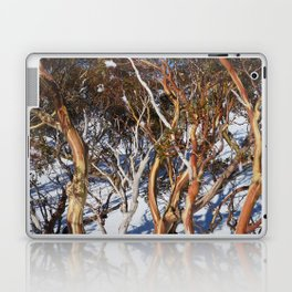 Snow Gums Laptop & iPad Skin