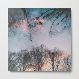 Subtle Color Metal Print