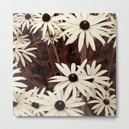 Daisies brown Metal Print