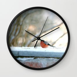 Red Plumage   Wall Clock
