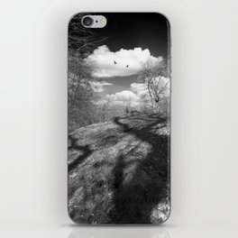 Carrion iPhone Skin