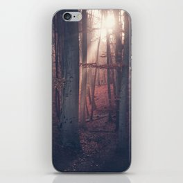 Autumn Moods iPhone Skin