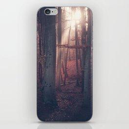 Autumn Moods iPhone Skin