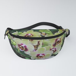 Hypnotic Vibes Fanny Pack