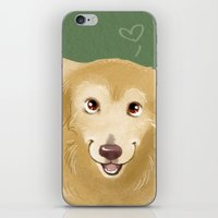 golden retriever iPhone & iPod Skins featuring Golden Retriever by Bark Point Studio