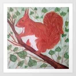 Red squirel on a hazel tree branch Art Print