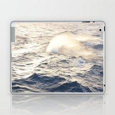 F1 Sea Laptop & iPad Skin