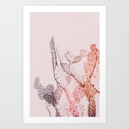 Boho Cactus II Art Print