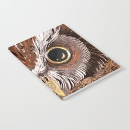 Painted Owl Notebook