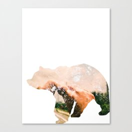 Bear.  Canvas Print