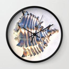BEAUTIFUL BLUE SEA SHELL Wall Clock