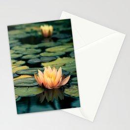 Celladora Stationery Cards