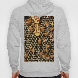 Sweet Honey Harvest Hoody