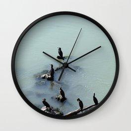 Cormorants Birds on the River Wall Clock