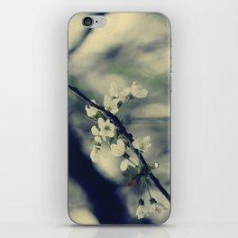 Focus on spring  iPhone Skin