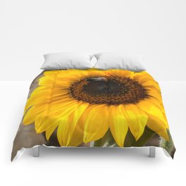 Sunflower with bumblebee Comforters