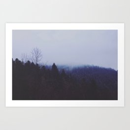 In the misty mountains Art Print