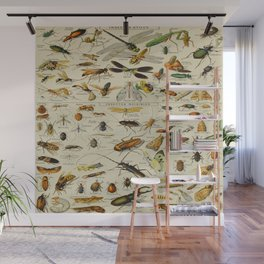 Insects Vintage Scientific Illustration French Language Encyclopedia Lithographs Educational Wall Mural