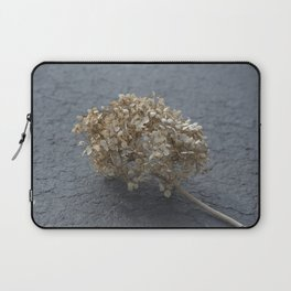 Blossoms on Blacktop Laptop Sleeve