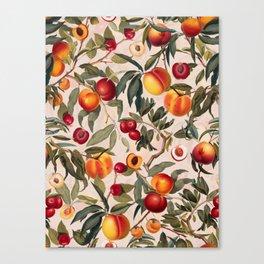 Vintage Fruit Pattern XXIII Canvas Print