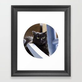 Savvy Framed Art Print