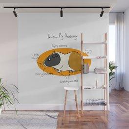 Guinea Pig Anatomy Wall Mural