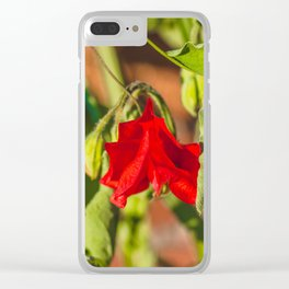 Sweet Pea 1 Clear iPhone Case
