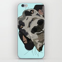 Great Dane In Your Face iPhone Skin