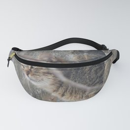 Cat view Fanny Pack