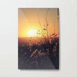 Sunset in Payson II Metal Print