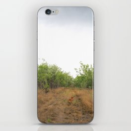 Dingo Camouflage  iPhone Skin