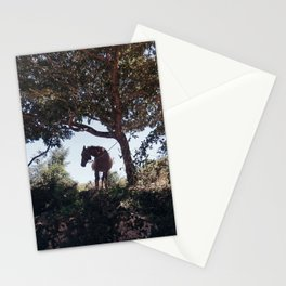 The horse Stationery Cards