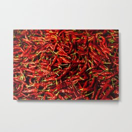 Chili in the Sun Metal Print