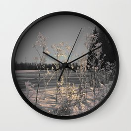 Snow Crystals Wall Clock